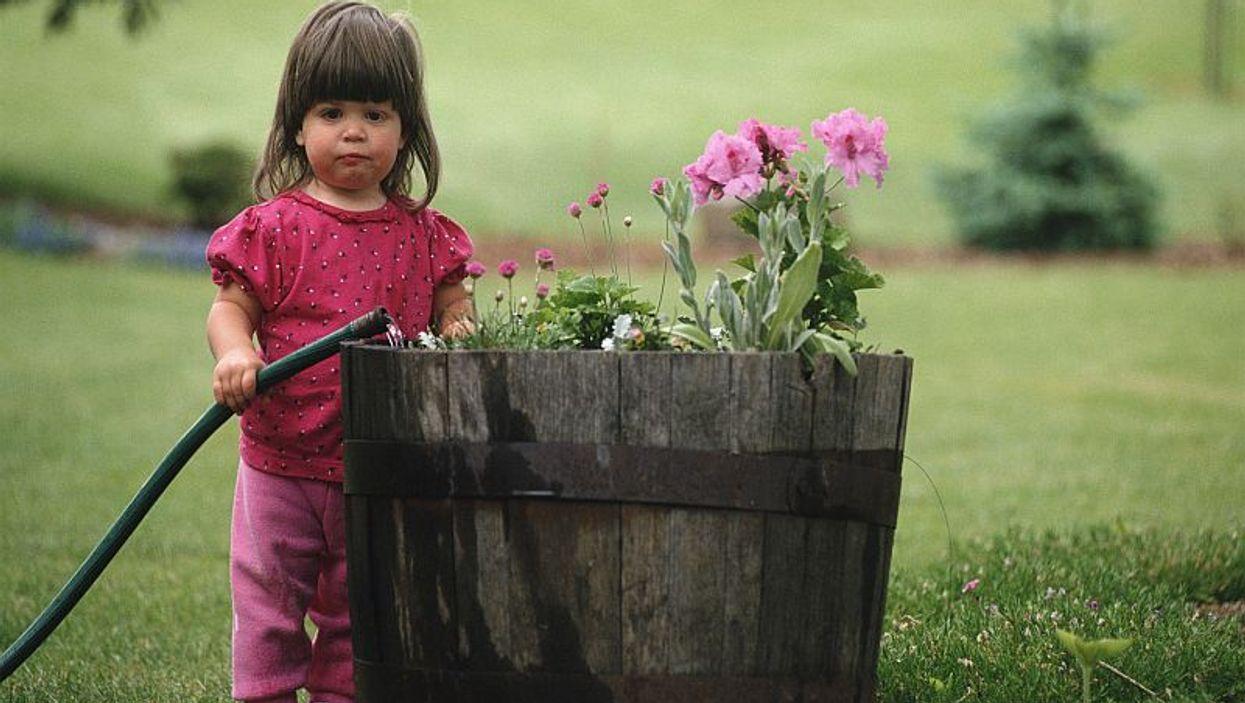 a little girl watering flowers