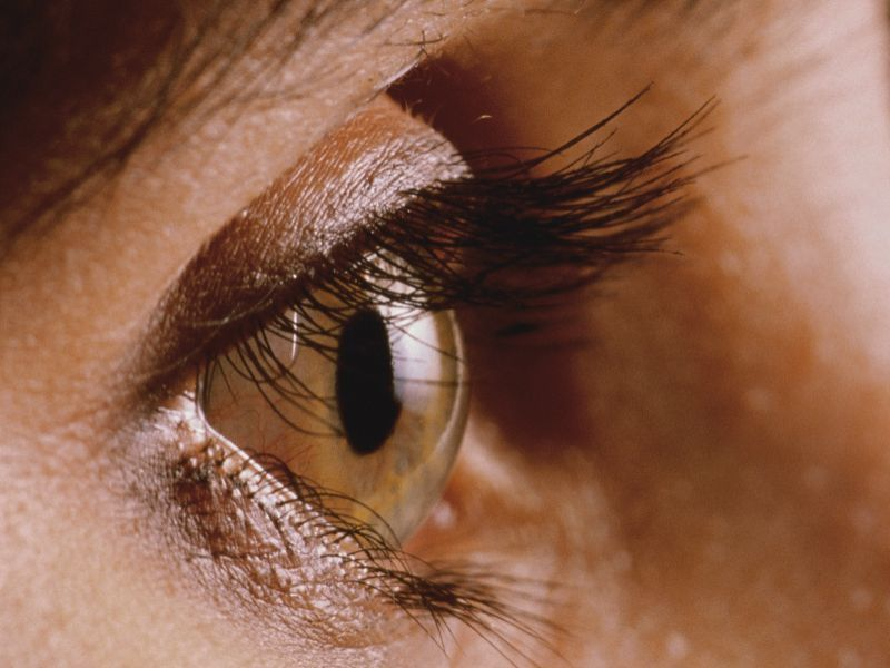 Your Corneas May Be Safe From COVID: Study thumbnail