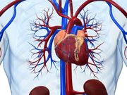 Blood Biomarker May Detect Acute Heart Transplant Rejection