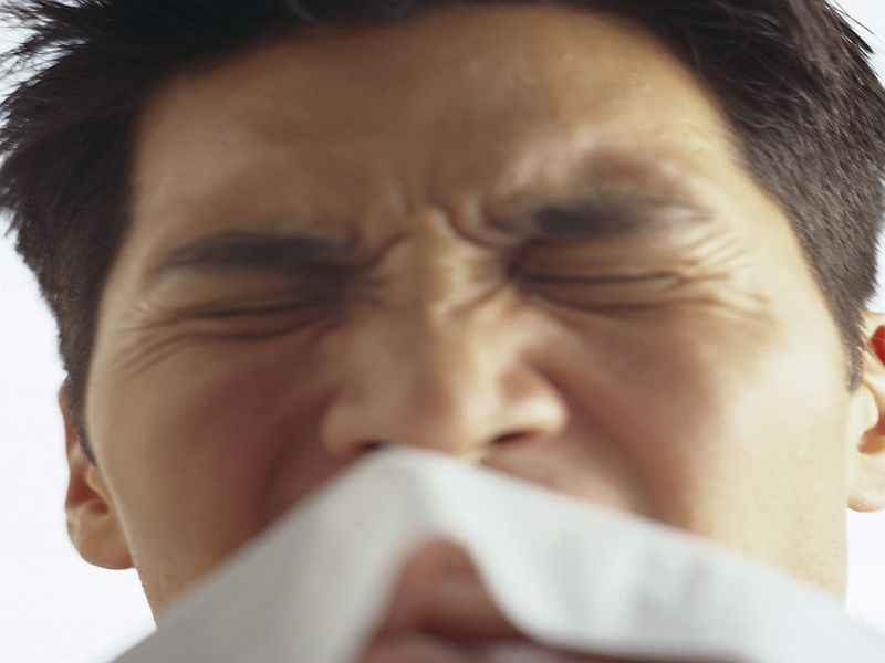News Picture: Prior Exposure to Common Cold Won't Shield You From COVID: Study