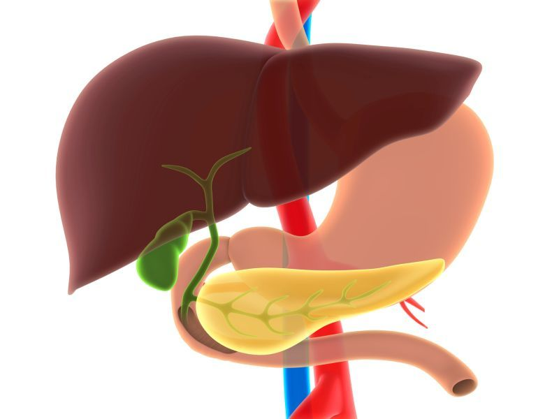 News Picture: Know the Signs of Rare But Deadly Gall Bladder, Bile Duct Cancers