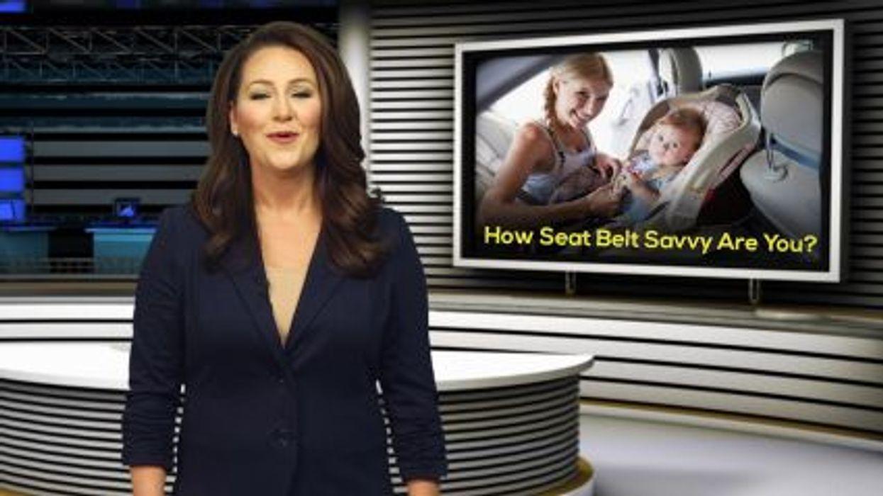 seat belt update