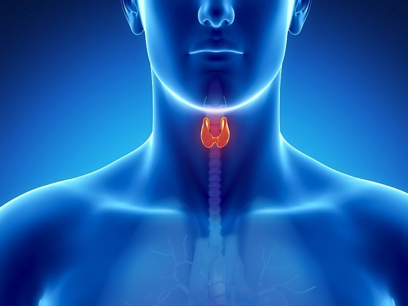 News Picture: COVID-19 May Trigger Long-Term Thyroid Issues: Study