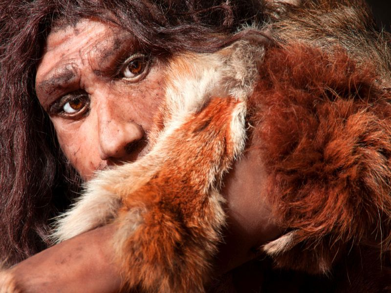 Neanderthal Poop Provides Clues to Modern Humans' 'Microbiome'
