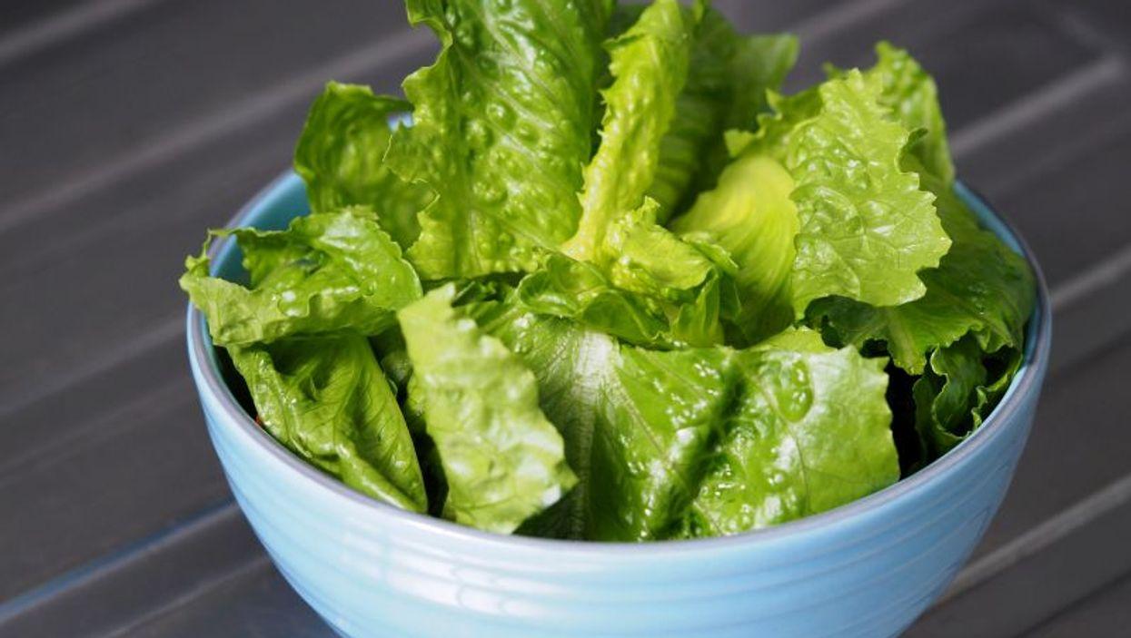 romaine lettuce in a bowl