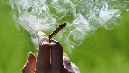 Abren más dispensarios de marihuana legal, y más adultos jóvenes comienzan a usarla