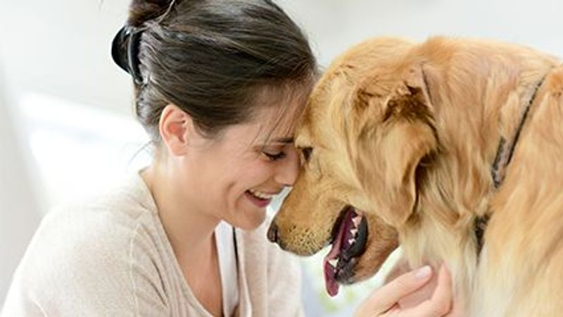 Your Dog May Not Understand Every Word You Say: Study