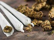 El consumo de marihuana aumenta a medida que avanza el año, según un estudio