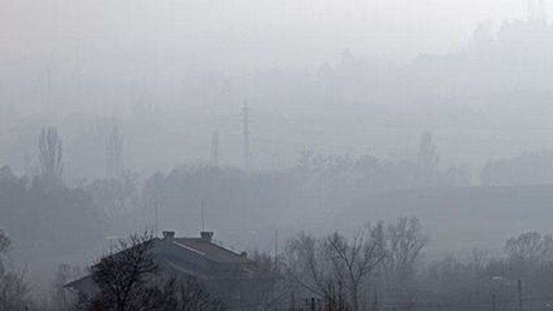 Air Pollution Takes a Toll on Your Kidneys