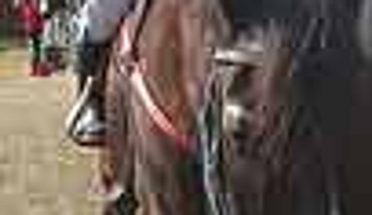 Gentle Horses Help Rein in Autism in Kids