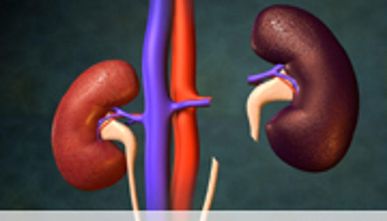 Kidney Transplant Tied to Better Survival Versus Dialysis