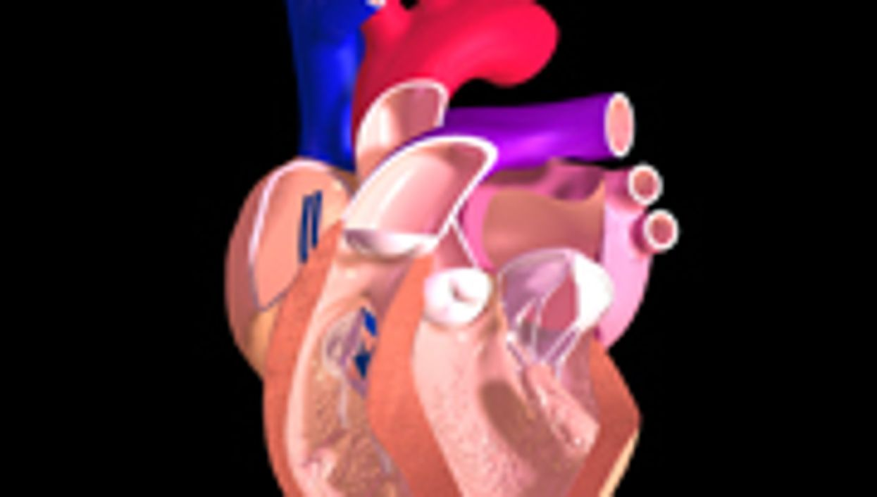 Irrational Health Beliefs Predict Adherence to Cardiac Rehab