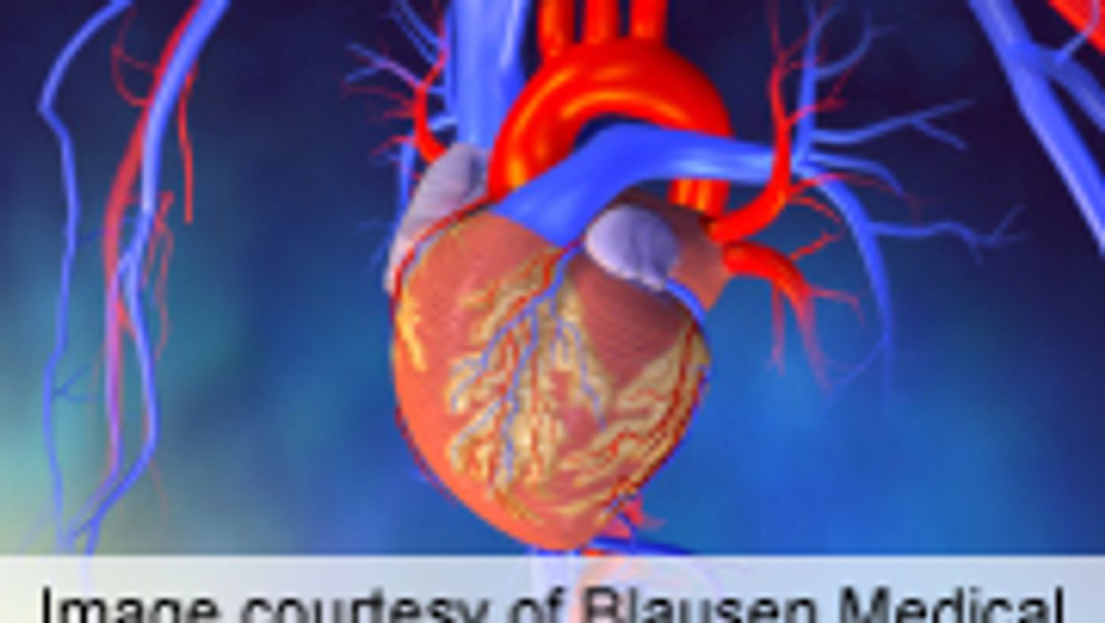 NT-proBNP Modestly Improves CVD Risk Prediction in Women