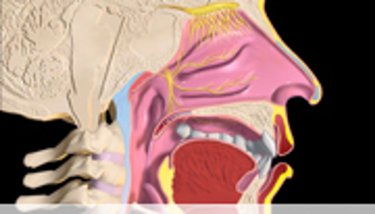 Racial Disparity in Head and Neck Cancer Outcomes