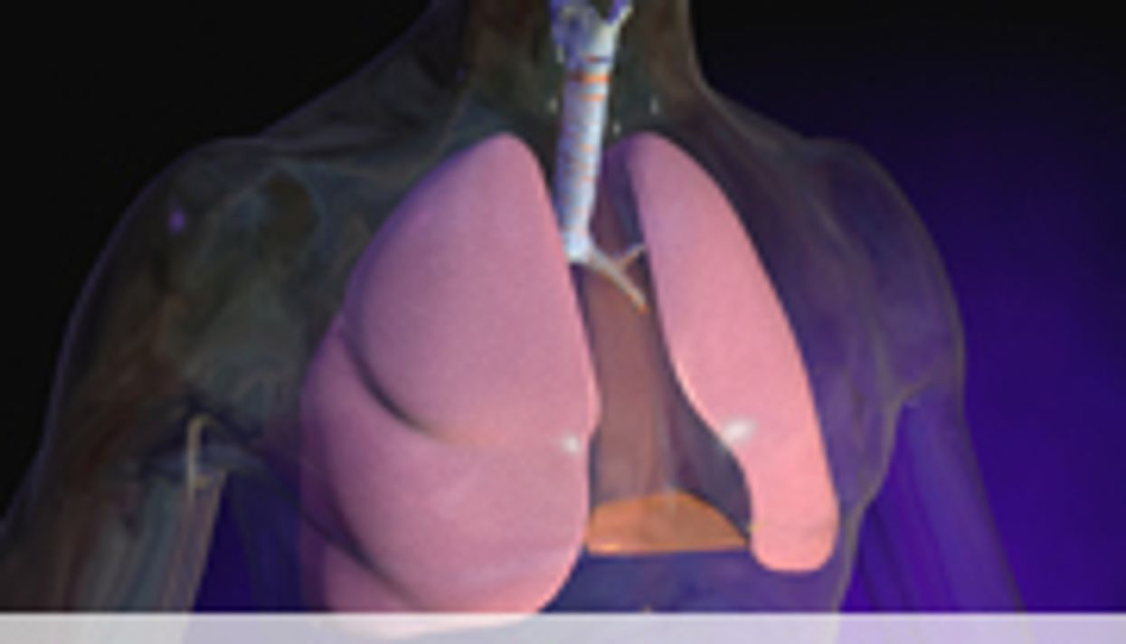 New Model Explains How Lungs Clear Foreign Matter