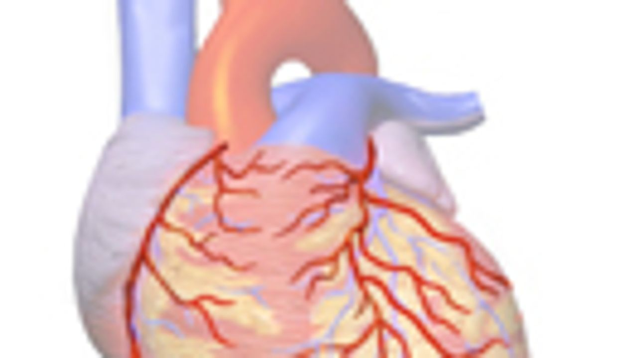 Functional Flow Reserve CT Improves Diagnosis of CAD