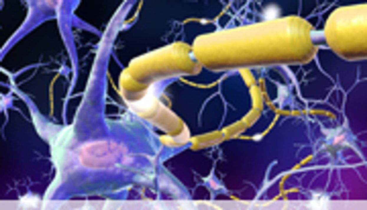 AAN: Stem Cells Show Promise in Mouse Model of ALS