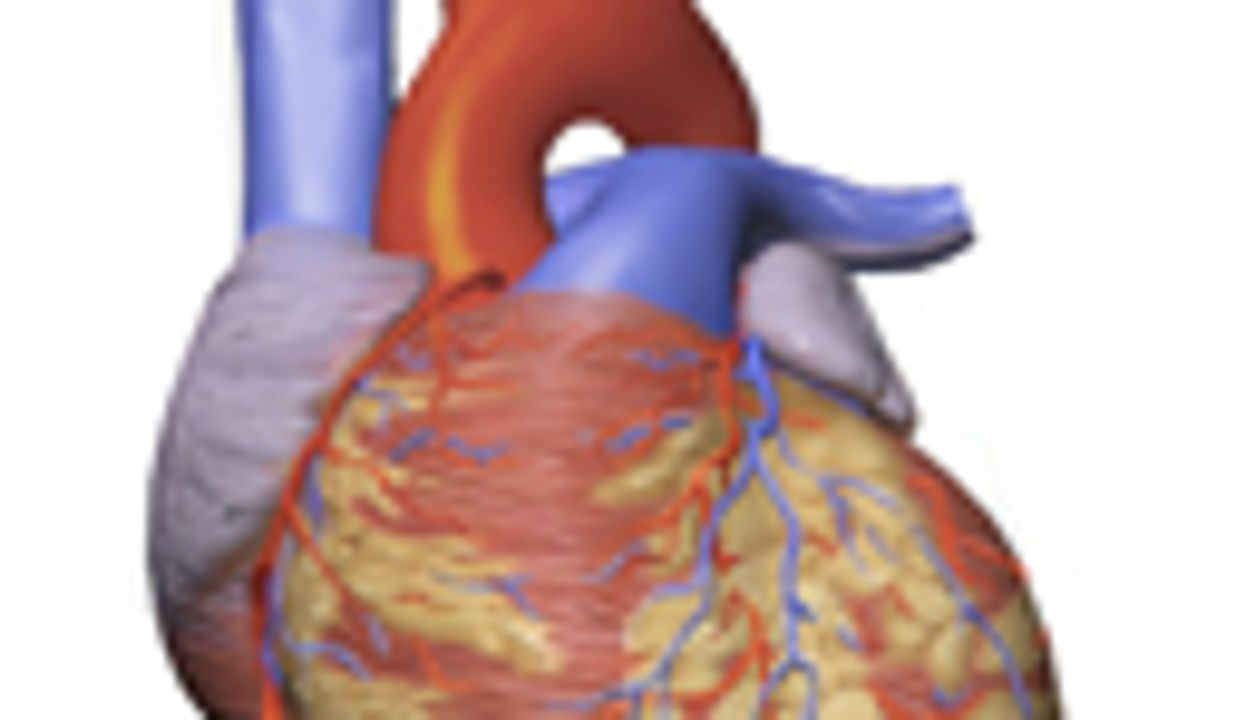 Review: AHA Should Include Depression As Risk Factor in ACS
