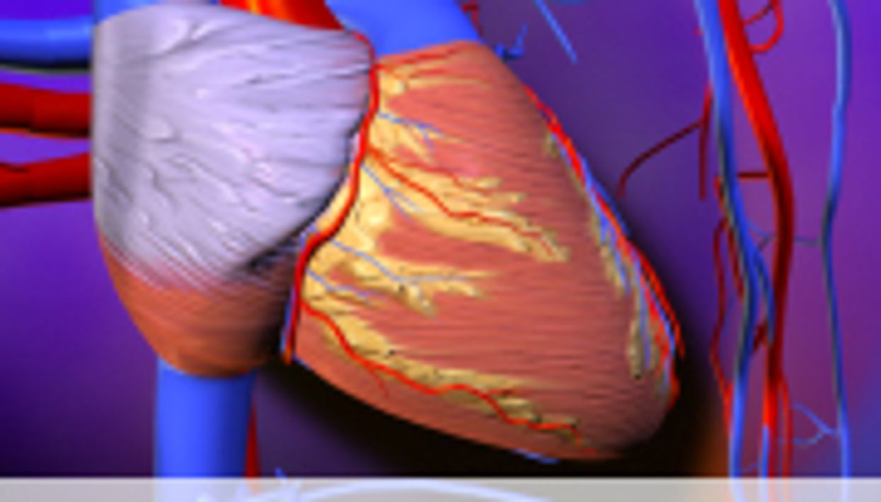 No Evidence Fatty Acid Guidelines Cut Coronary Risk