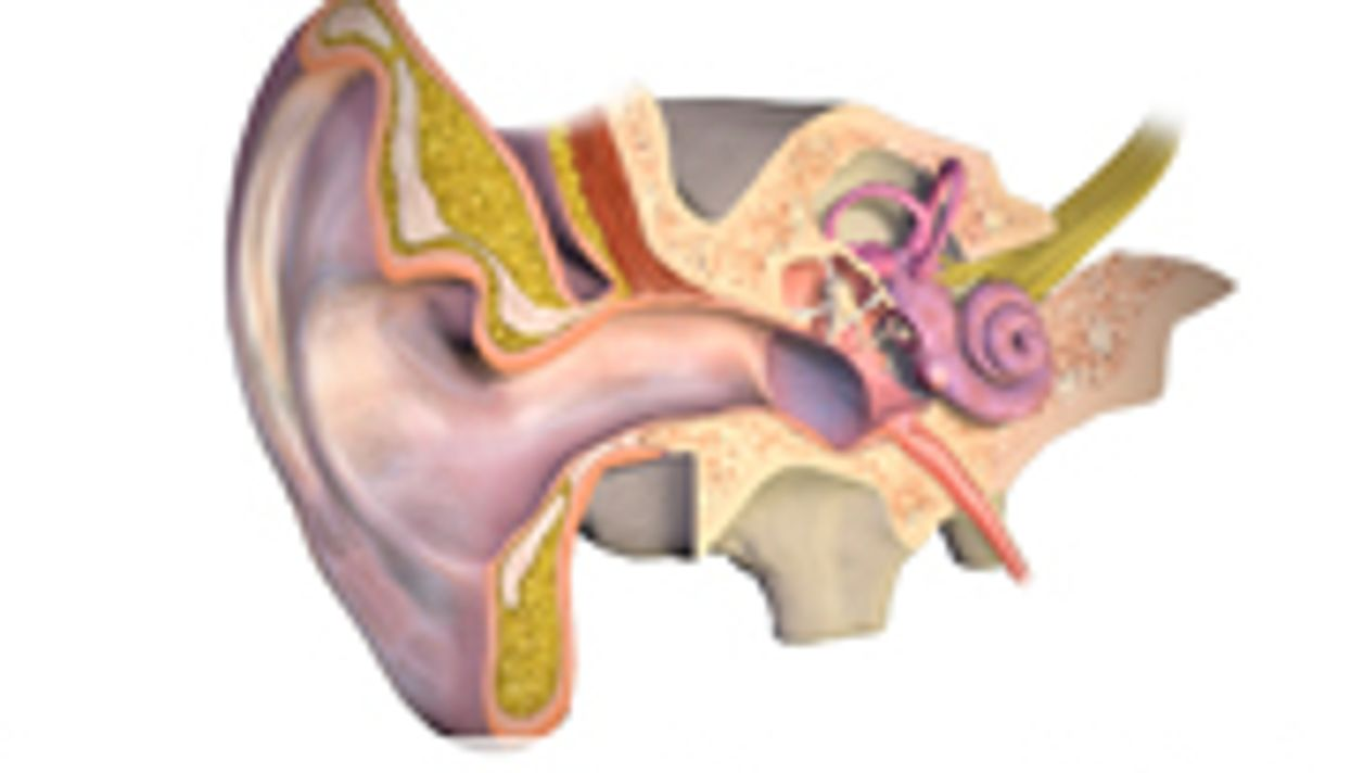 Tinnitus-Linked Symptoms Improved With D-Cycloserine