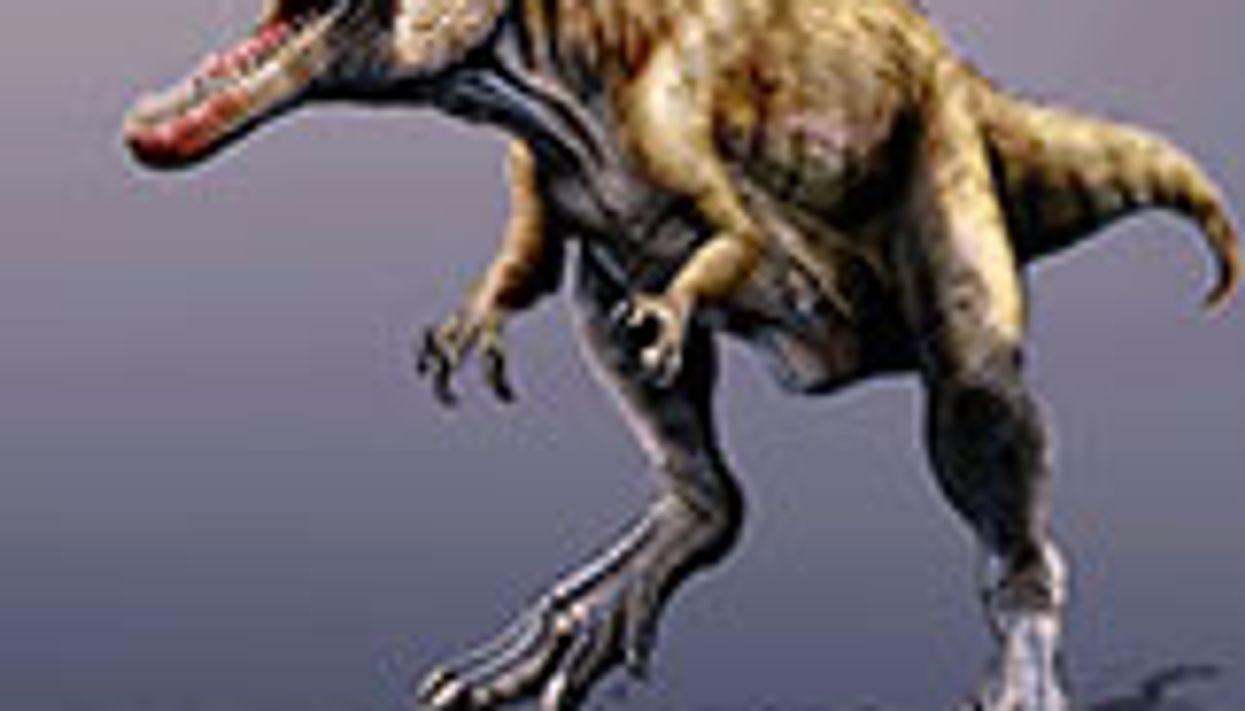 Colossal Predatory Dinosaur Remains Identified in Utah