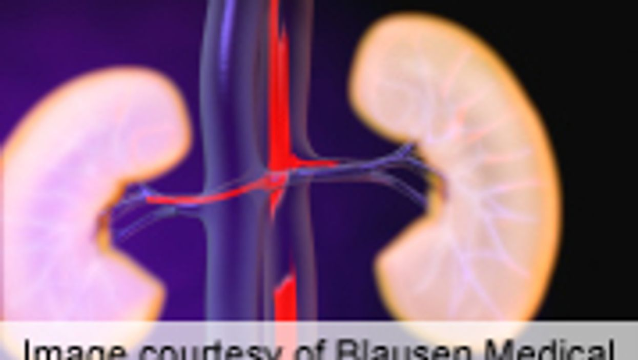 AHA: Stenting No Benefit for Renal-Artery Stenosis