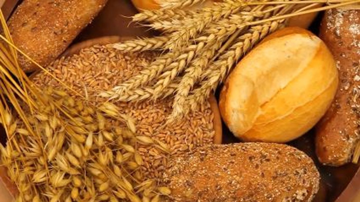 Where Do Grains Fit In?