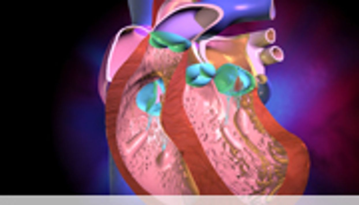 Menopausal Hormone Therapy Does Not Affect Atherosclerosis
