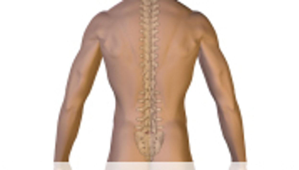 Meds/PT May Work As Well As Surgery for Spinal Stenosis
