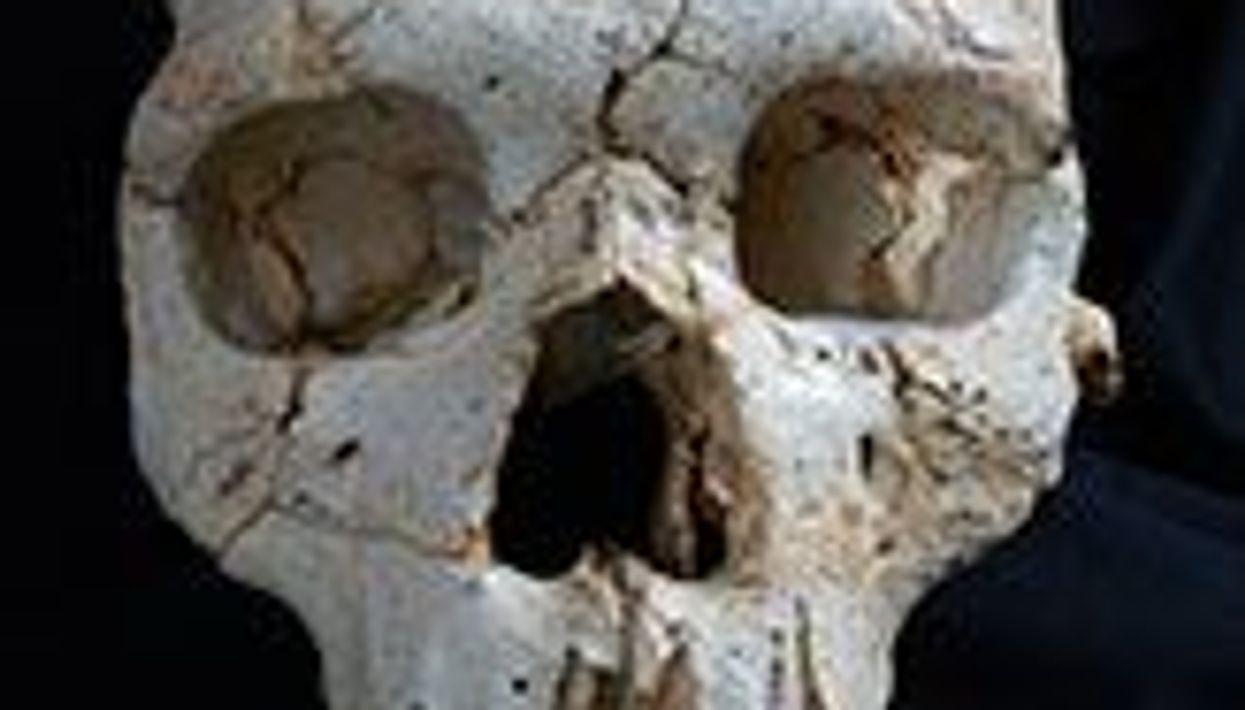 Murder Most Foul, 430,000 Years Ago
