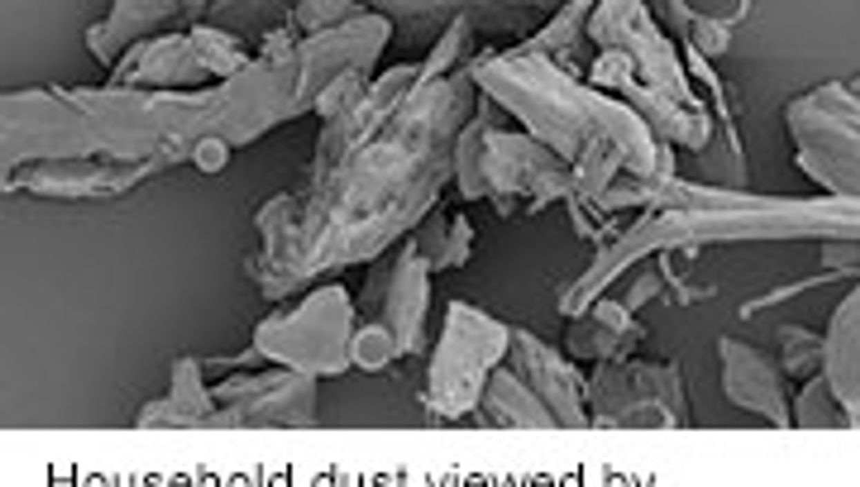 Household Dust Harbors Thousands of Microbial Species
