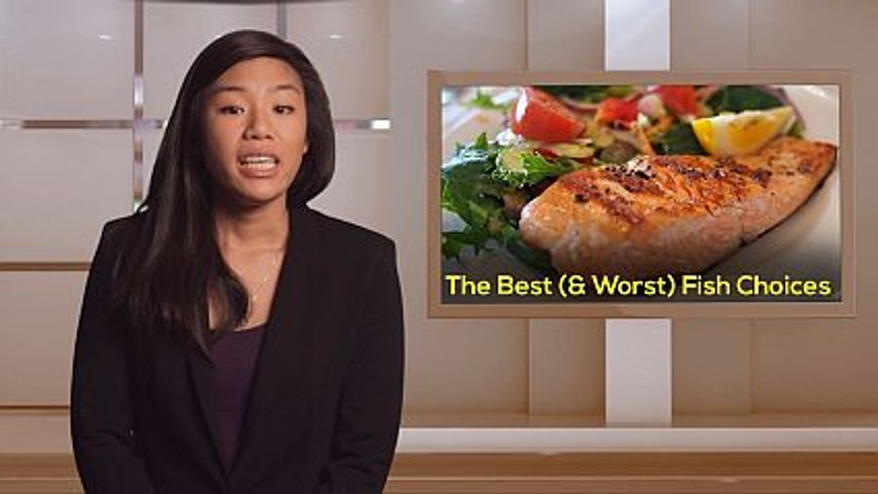 The Best (and Worst) Fish Choices