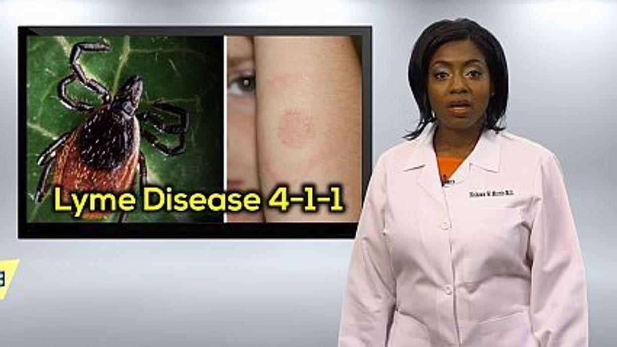 Lyme Disease 411