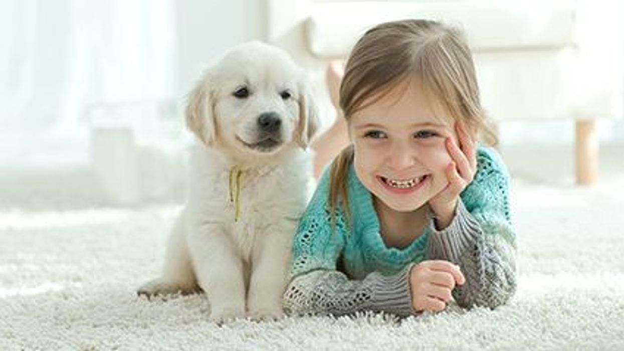 Children and Veterinary Medications