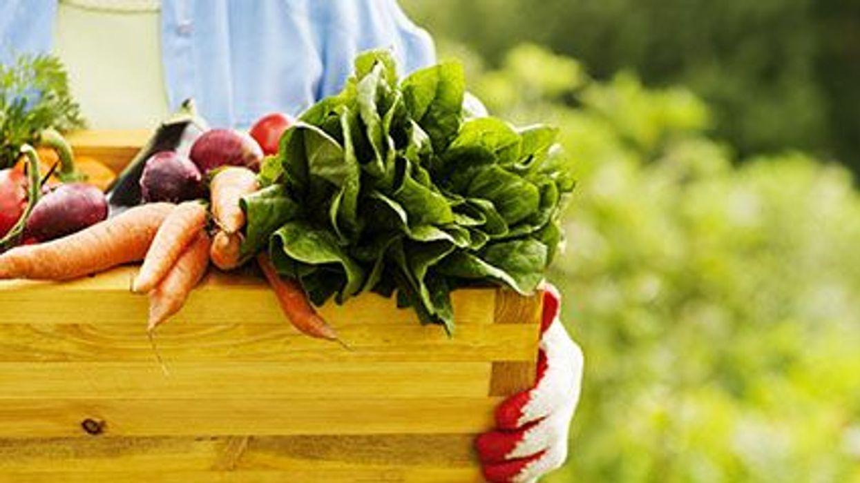 Las dietas vegetarianas y la diabetes