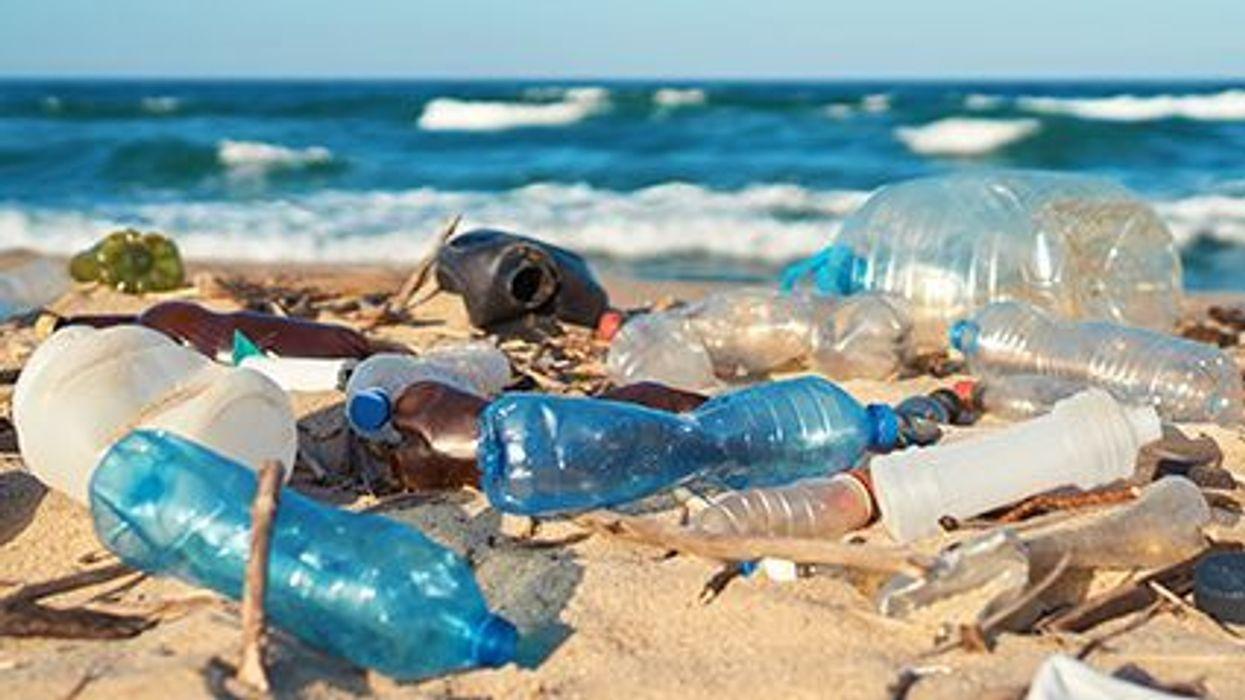 Unos investigadores encontraron partículas de plástico en órganos humanos