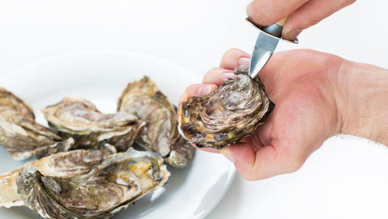 Which Seafood Has the Highest Amount of Microplastics?