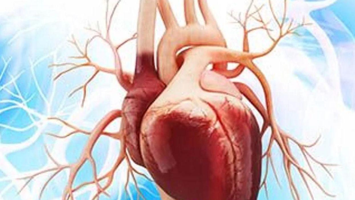 LVAD至適離脱プロトコルで心筋機能が回復