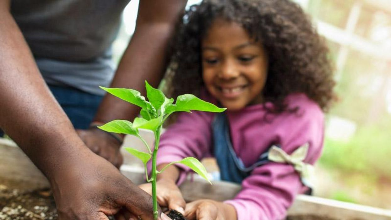 AHA News: 5 Things to Know This Earth Day About How the Environment Affects Health
