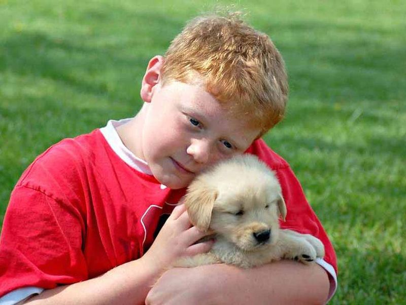 Your Puppy Is Born Ready to Interact With You: Study