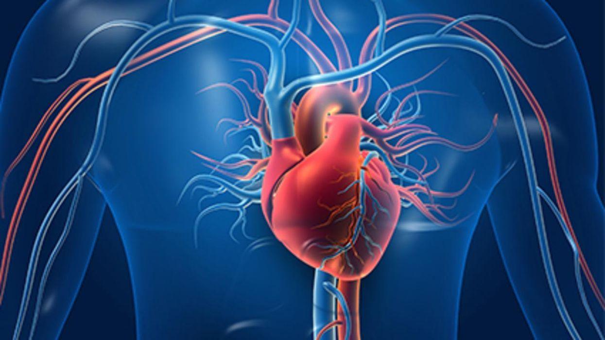 A Healthier Heart Might Make You Smarter