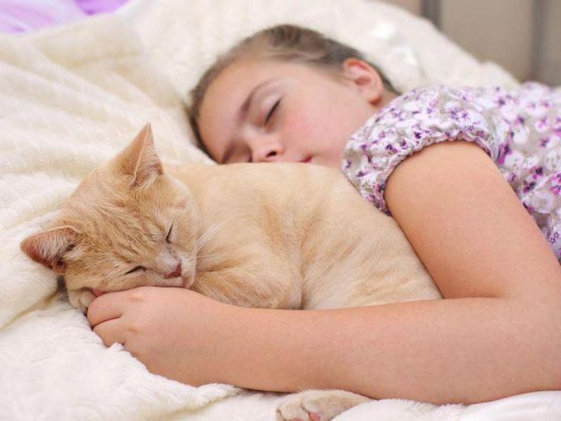 Bedtime With a Pet Won't Harm Your Kid's Sleep - and Might Help