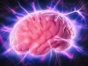 Un fenotipo cardiovascular más sano se vincula con una mejor cognición