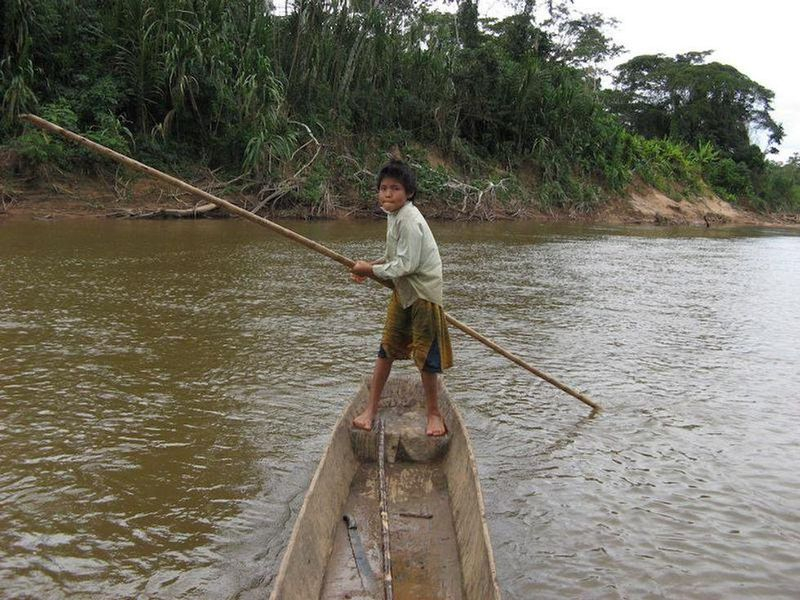 Amazon Tribe Could Hold Key to Health of Aging Brains