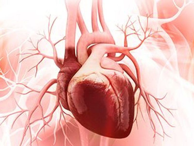 Old Age No Bar to Successful Heart Transplant, Study Finds