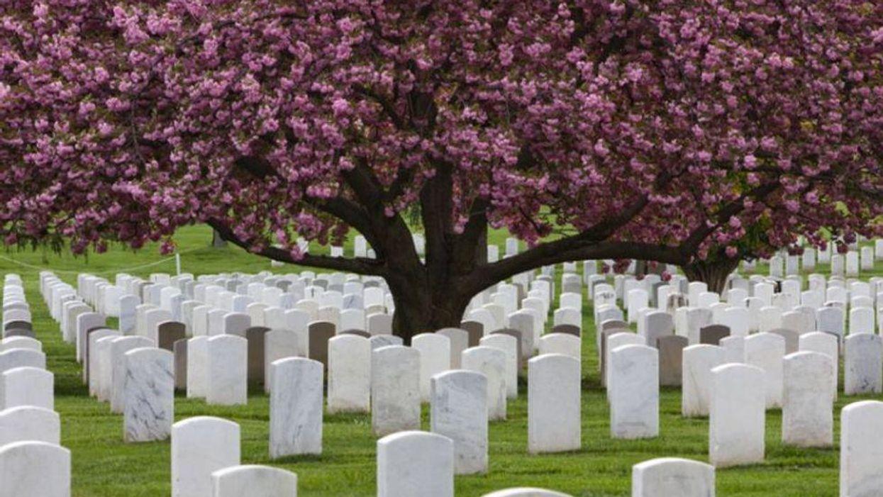 cemetery tombstones