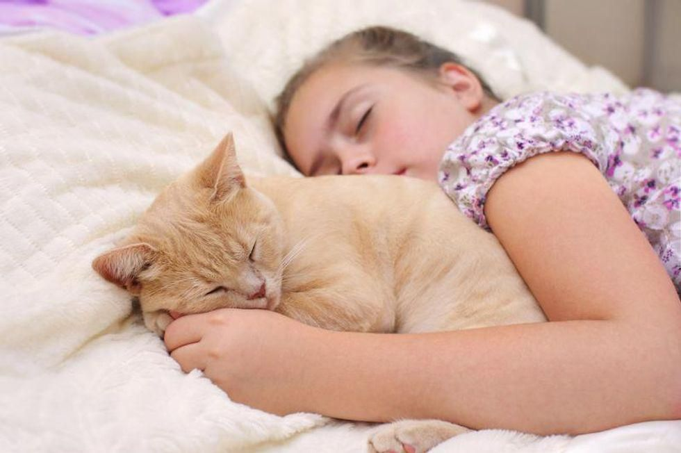 Pets Often Catch COVID From Owners, Study Finds