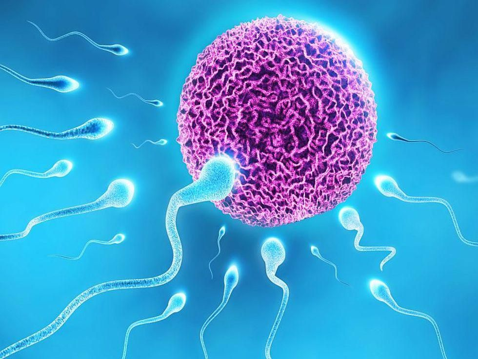 Kids Born Through Fertility Treatments Have No Higher Cancer Risk