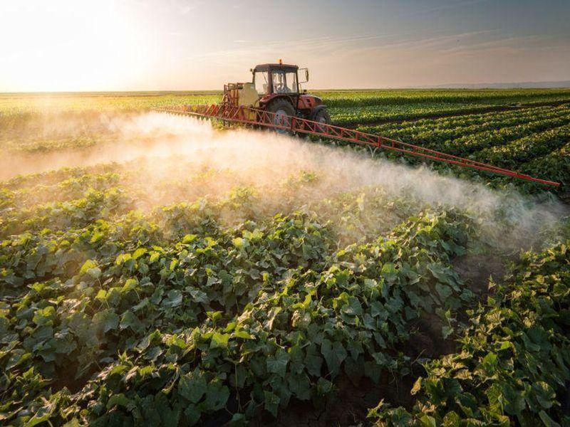 Pesticide Harmed Children's Brains: Lawsuits