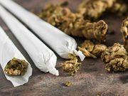 ¿Podría un uso empedernido de la marihuana ser responsable de un aumento en los casos de esquizofrenia?